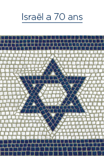 Cover of Israel at 70 ebook written in French